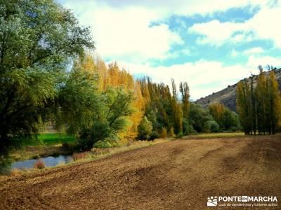 Hoces Río Riaza - Villa Ayllón; parque nacional de las islas atlánticas ruta por asturias y canta